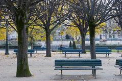 Square Jean XXIII garden, Paris Royalty Free Stock Image
