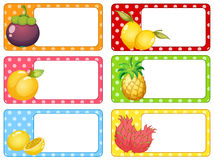 Square labels with fresh fruits Stock Photos