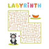 Square labyrinth with gray cartoon cat and plate with sausage on white background. Children maze. Game for kids. Children puzzle. Help the cat find the way to vector illustration