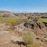 Square Landscape of the Badlands Stock Images