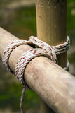 Square lashing by scouts. Scouts have tied together with a square lashing Royalty Free Stock Photos