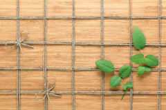 Square lined rope pattern on a wooden background and rose leaves interwoven between it. Texture for nature themes. Stock Photography