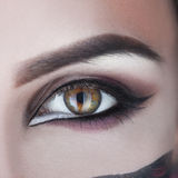 Square macro photo of woman eye with make up Royalty Free Stock Photography
