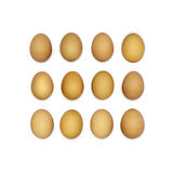 Square made of dozen brown eggs. Stock Images
