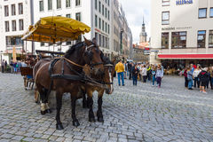 Square Neumarkt and pulled by horses carriage in the old town Stock Photography