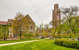 Free Square Of Chicago University Campus With View Of Saieh Hall For Economics Tower, USA Royalty Free Stock Photography - 103572747
