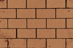 Square orange brick wall background. Stock Image