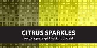 Square pattern set Citrus Sparkles Stock Photography