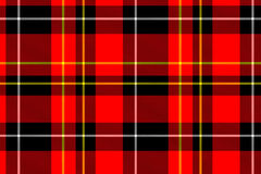 Square pattern tartan Stock Image
