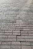 Square paving asphalt. Royalty Free Stock Images