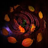 Horseshoes and Autumn Leaves. Square photo of four rusty horseshoes surrounded by wet fall foliage on dark brown wooden surface. Dark low key photo. One single Stock Photo