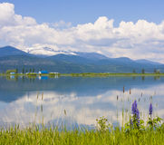 Pend Oreille River Reflection of Clouds, Selkirk Mountains and Western Lupine Stock Images
