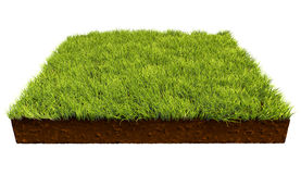 Square piece of land with green grass. Isolated on white background. 3D illustration Royalty Free Stock Images