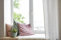 Free Square Pillows, Plaid And Plant At The Window Stock Images - 124405104