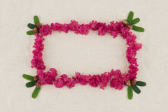 Square pink crape myrtle petals. Wreath with green leaves with copy space royalty free stock photo