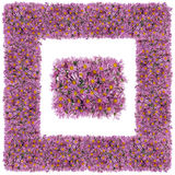 Square pink floral frame Royalty Free Stock Photography