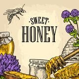 Square poster with honey, honeycomb, jar, spoon, bee. Royalty Free Stock Photo