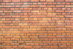 Square red brick wall background Stock Photography