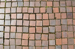 Square Red Clay Bricks Stock Image