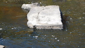 Square Rock. In the middle of the creek Stock Image