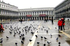 Square San Marco in Venice Royalty Free Stock Photo