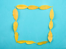 Square Shape Yellow Autumn Leaves On Turquoise Table. Square Shape Yellow Autumn Leaves On Turquoise Wood Table royalty free stock photo