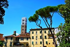 Lucca city Italy. Square sky windows cloud tower colors country road street courts green door panorama sunset courts sleep square Italy Royalty Free Stock Images