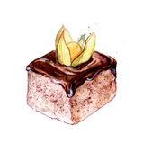 Square slice of cake with chocolate icing decorated with orange ground cherry. Sweet pastry  watercolor illustration. Stock Images