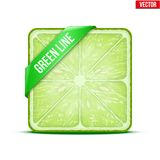 Square slice of lime Green Line. Vector Royalty Free Stock Photo