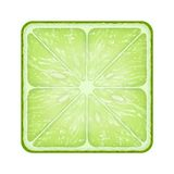 Square slice of lime. Isolated on white background Stock Photography