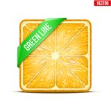 Square slice of orange Green Line. Vector Royalty Free Stock Photo