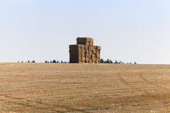 Square stack straw Royalty Free Stock Photos