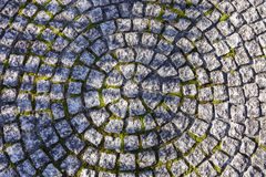 Square stone tile in circle pattern on pathway. Background texture Stock Images