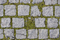 Square stones texture with grass Royalty Free Stock Photography