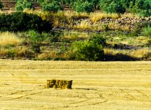 Square straw bales in stubbly field in the region of Andalusia,. Harvest time in the agriculture industry, specific seasons Stock Photos