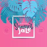 Square Summer Tropical palm monstera leaves in trandy paper cut style. White frame 3d letters SUMMER SALE hiding in exotic blue. Leaves on pink background for stock illustration