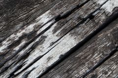 Square surface of decayed wood. Stock Photography