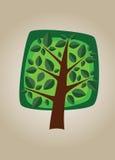 Square  tree 03 Royalty Free Stock Photo