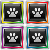 Square vector button set with paw print icon. Shiny square vector button set with pet paw print icon on black background Royalty Free Stock Photo