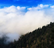 Square vivid mountain hill forest in fog cloudscape bokeh backgr Royalty Free Stock Image