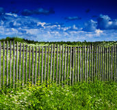 Square vivid summer village fence horizon cloudscape Royalty Free Stock Image