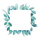 Square watercolor frame of green leaves. Or eucalyptus for invitation or card Stock Photo