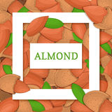 Square white frame and rectangle label on almond nuts background. Vector card illustration Stock Images