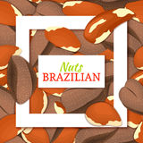Square white frame and rectangle label on brazilian nuts background. Vector card illustration. Stock Photos