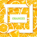Square white frame and rectangle label on citrus orange fruit background. Vector card illustration. Royalty Free Stock Photos
