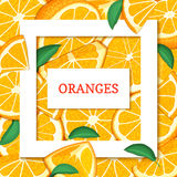 Square white frame and rectangle label on citrus orange fruit background. Vector card illustration. Tropical fresh and juicy oranges fruits for design of food Stock Photos