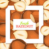 Square white frame and rectangle label on nutty hazelnut background. Vector card illustration. Royalty Free Stock Photo