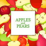 The Square white frame on ripe apple pear fruit background. Vector card illustration.  Stock Photo