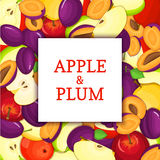 The Square white frame on ripe apple plum fruit background. Vector card illustration. Delicious fresh and juicy plums Royalty Free Stock Photos