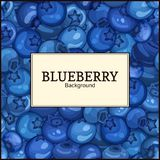 Square white label on ripe blueberry berry background. Vector card illustration. Blue bilberry fresh and juicy frame  Royalty Free Stock Photography